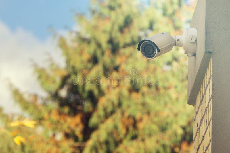 Moderne Überwachungskamera auf Gebäudewand, Laubhintergrund stockfotografie