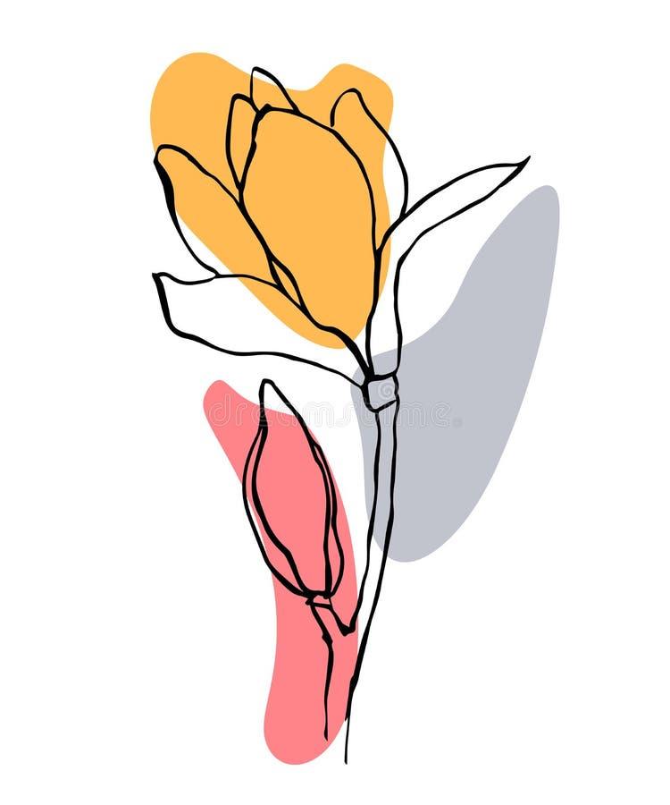 Moderne abstracte vormen vectorachtergrond of lay-out De tekeningsbloem van de contourlijn van magnolia De moderne esthetische mi stock illustratie