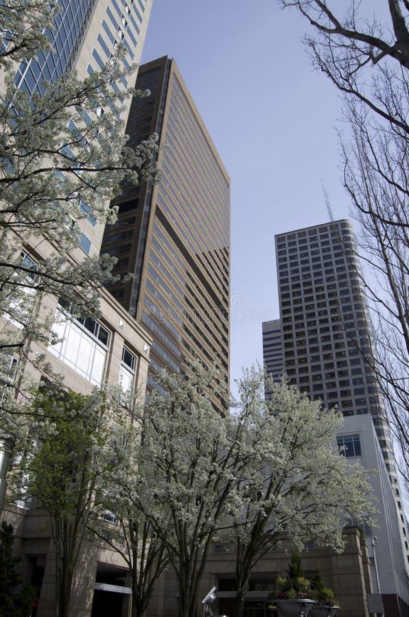 Moderne bureaugebouwen stock foto