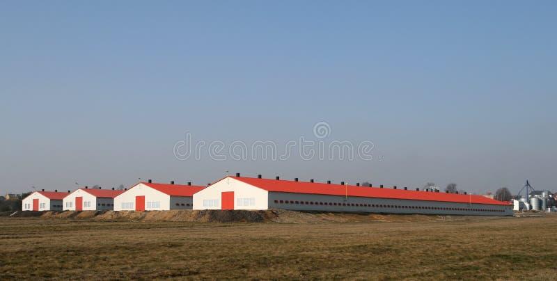Moderne Geflügelfarmen stockfotos