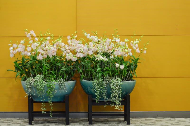 Moderne gemengde bloem royalty-vrije stock afbeeldingen