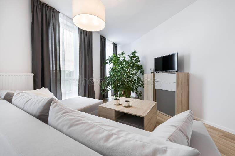 Download Moderne Innenarchitektur: Wohnzimmer Stockfoto   Bild Von Blumen,  Leuchte: 44126790
