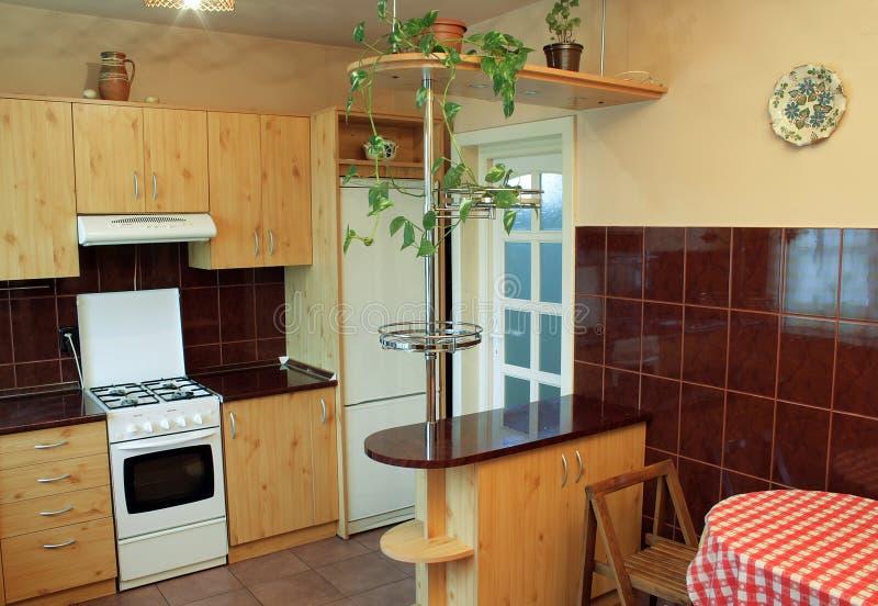 Moderne keuken met houten meubilair stock foto