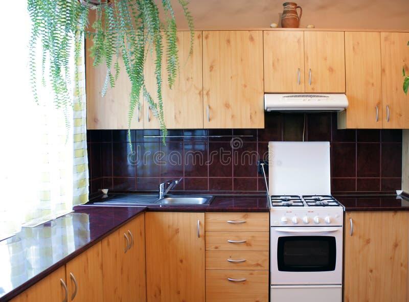 Moderne keuken met houten meubilair royalty-vrije stock afbeeldingen
