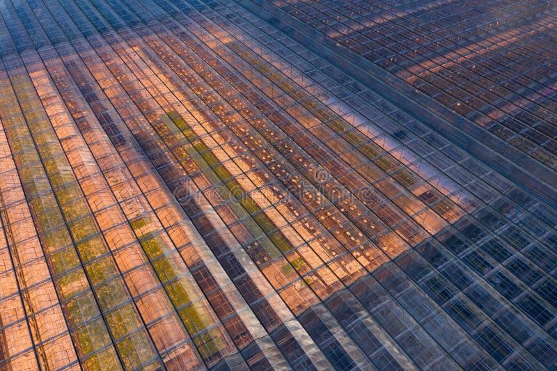 Moderne landbouw Industriële broeikasgassen met verwarming royalty-vrije stock foto