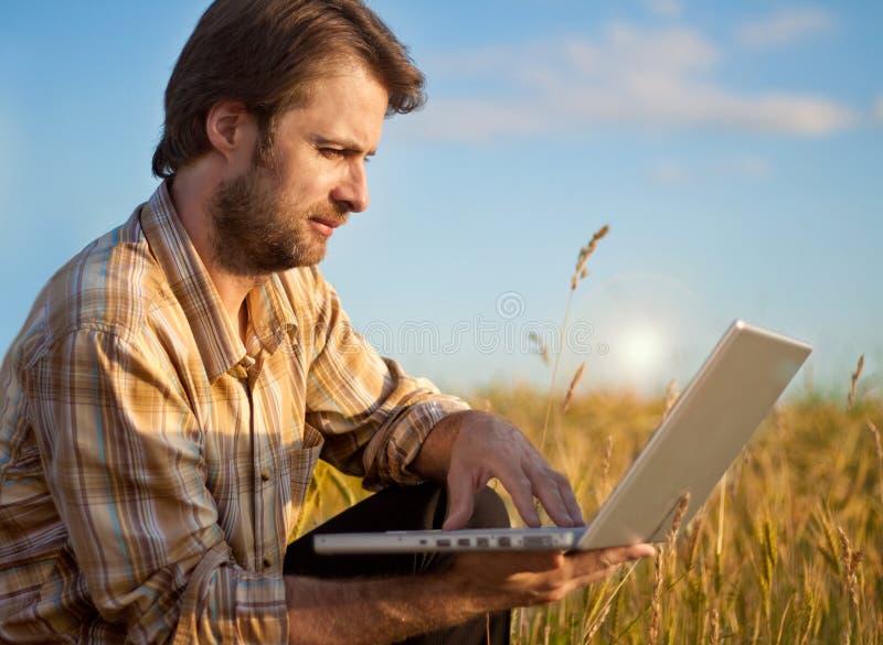 Moderne landbouwer op tarwegebied met laptop royalty-vrije stock foto