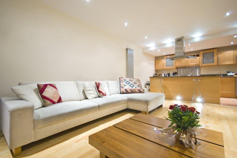 Moderne open planwoonkamer en keuken stock afbeelding