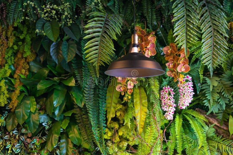 Moderne schwarze Innenbeleuchtungsbirnen der Metalldeckenleuchte mit grünem frischem natürlichem Dekorationszeitgenossen lizenzfreie stockfotos