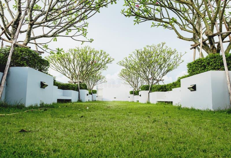 Moderne tuin op dekdak groen grasgazon met tropische boom stock afbeelding afbeelding 93715663 - Moderne tuin ingang ...