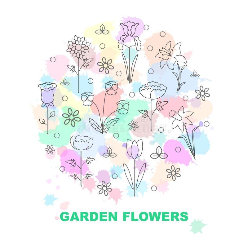 Moderne vectorlijnpictogrammen met verschillend soort tuinbloemen stock illustratie