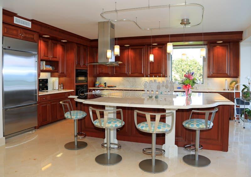 Moderne, Voor de betere inkomstklasse Keuken stock afbeelding