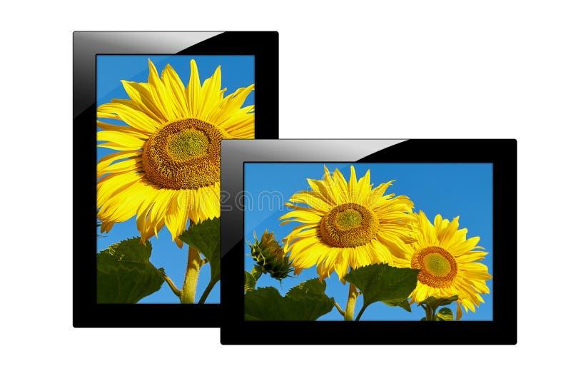 Moderne zwarte die tabletcomputer op witte achtergrond wordt geïsoleerd Tabletpc en het scherm met Beeld van zonnebloemen royalty-vrije illustratie
