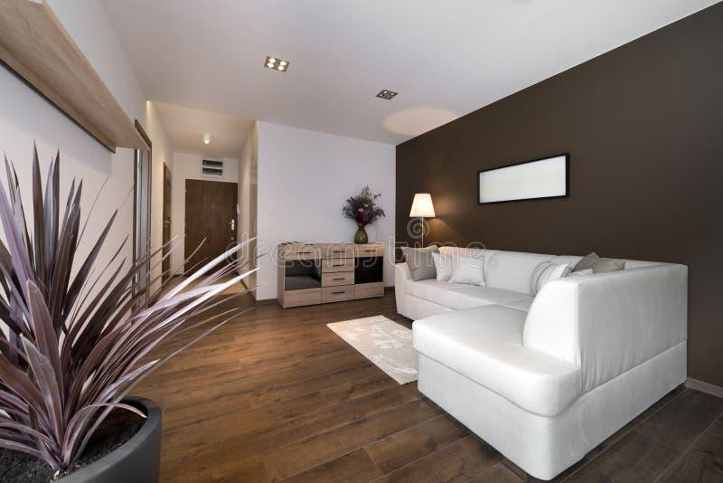 Modernes braunes Innenarchitekturwohnzimmer lizenzfreie stockfotografie
