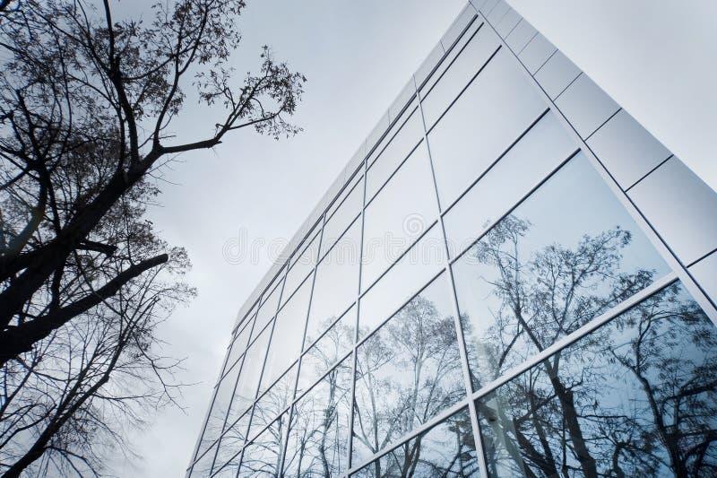 Modernes Fassadedetail mit Baumreflexion lizenzfreie stockfotografie