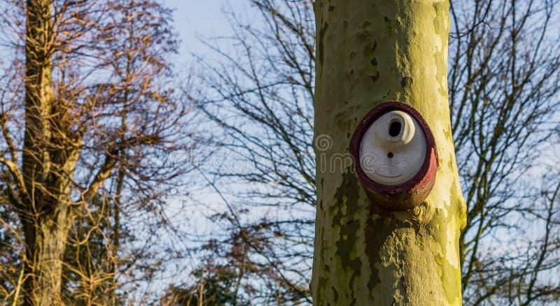 Modernes keramisches Vogelhaus, das an einem Baumstamm, Gartendekorationen hängt lizenzfreie stockfotografie