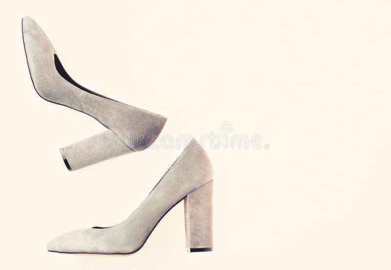Modernes Schuhkonzept Paare der modernen Stöckelschuhe Arbeiten Sie die Schuhe der Frauen mit breiter Ferse, Draufsicht um stockbilder