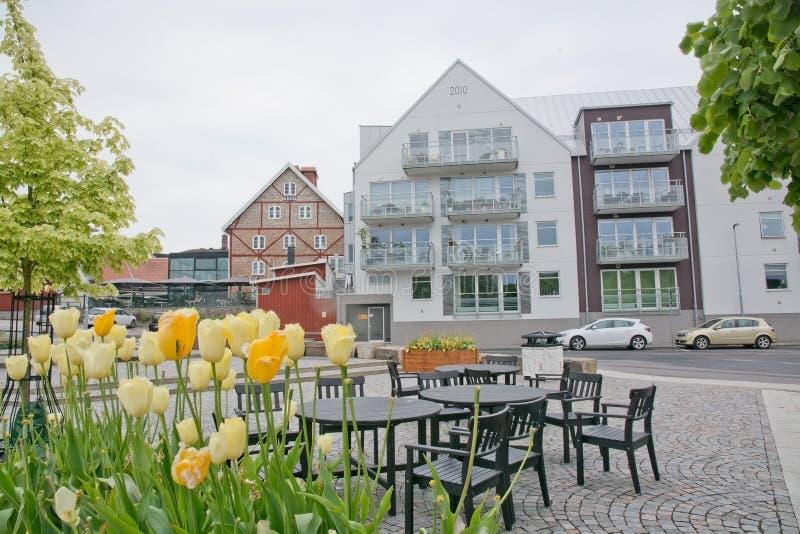 Modernes Wohngebäude mit Tulpen lizenzfreies stockbild