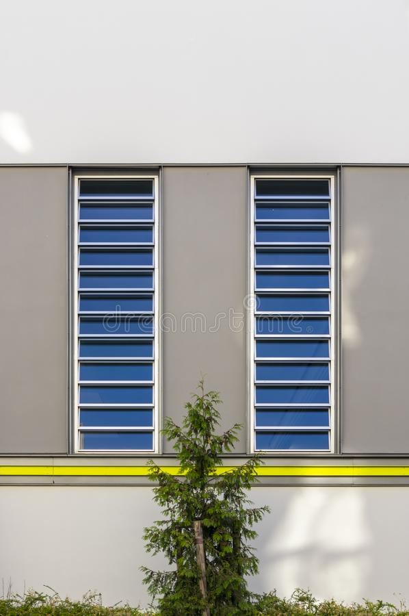 Modernized facade of a sports and gym with vertical bands of light and a yellow border and visually contrasted area in gray and. Conifer in the foreground in royalty free stock photos