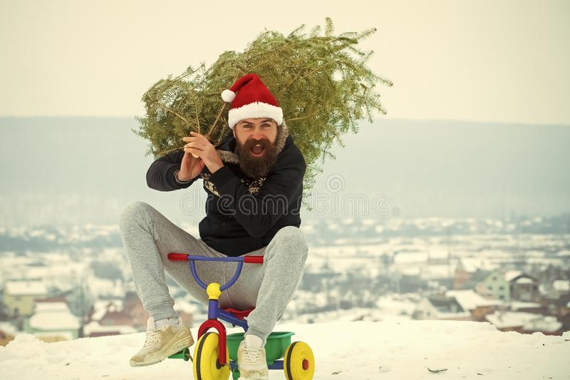 Moderno feliz que leva a árvore do xmas na neve branca fotos de stock