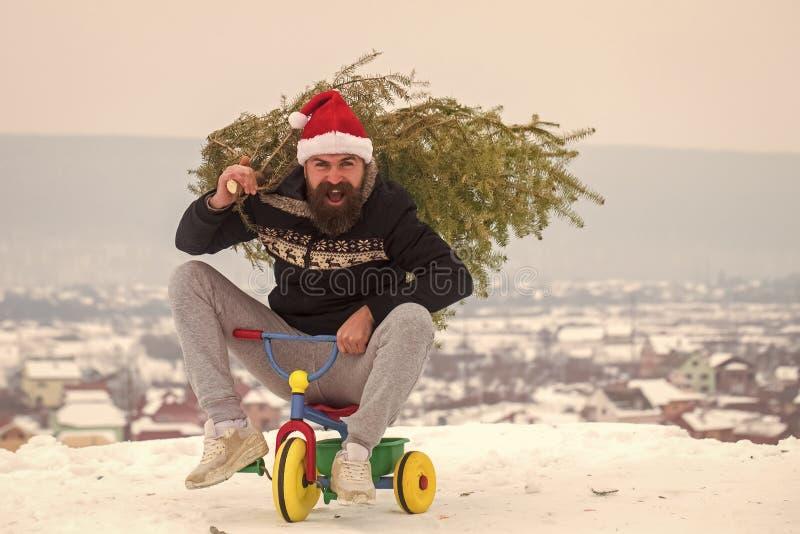 Moderno feliz que leva a árvore do xmas na neve branca fotografia de stock