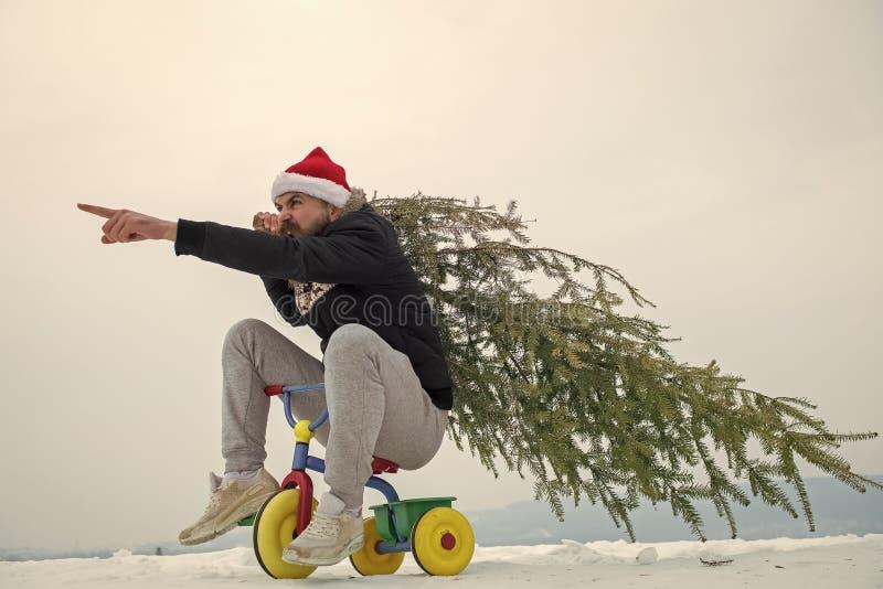 Moderno que leva a árvore do xmas na neve branca fotografia de stock royalty free