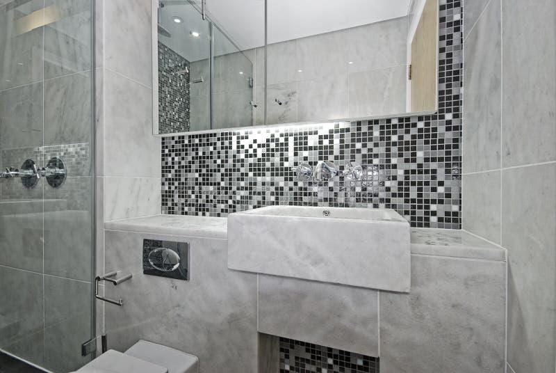 modernt följe för badrumen arkivfoton