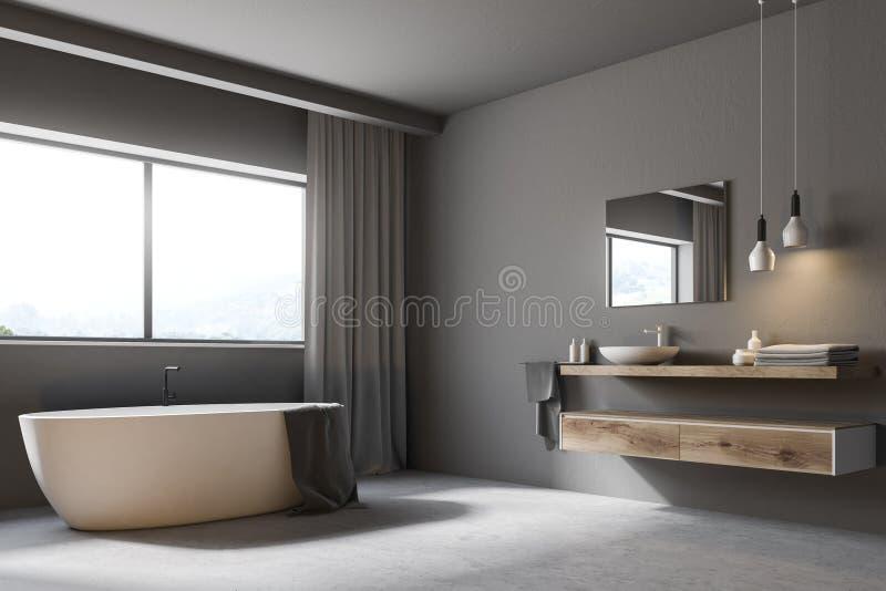 Modernt grått badrumhörn royaltyfri illustrationer