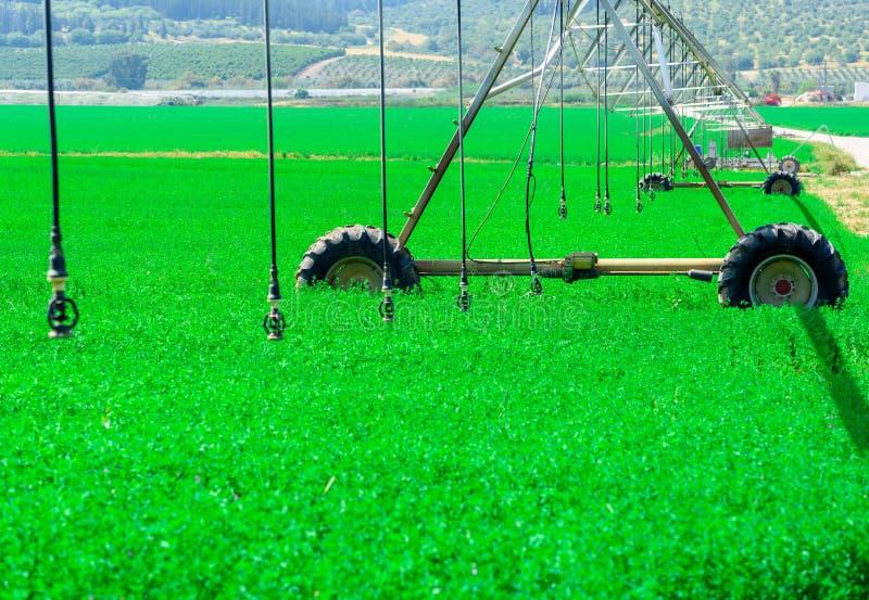 Modernt lantbruk Centralt svängtappbevattningsystem i ett grönt fält royaltyfria bilder