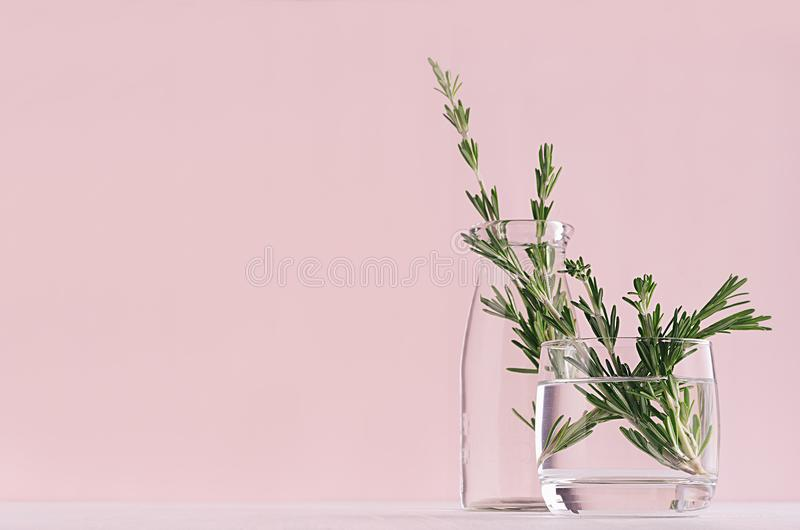 Modernt mjukt ljus - rosa pastellfärgad hemmiljö med den gröna växten i genomskinligt tappningexponeringsglas på vit wood bakgrun royaltyfri fotografi