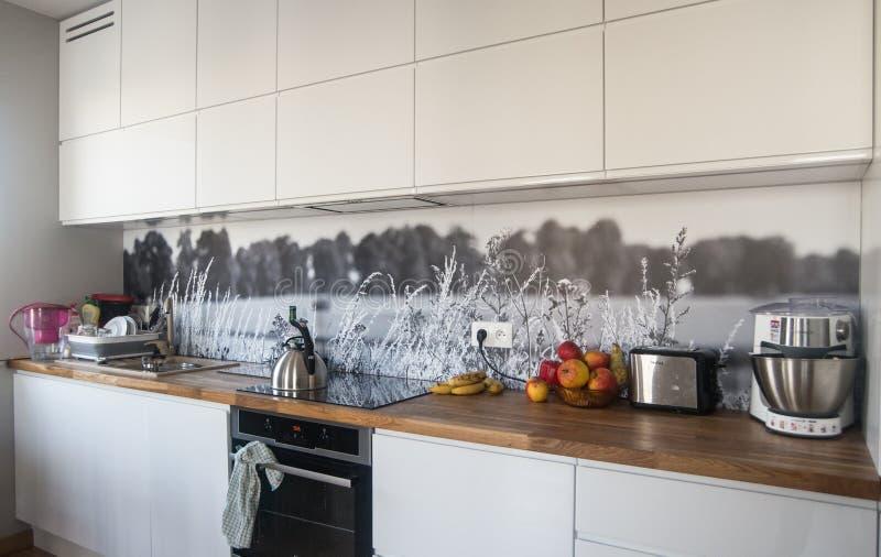 modernt nytt för kök royaltyfri bild