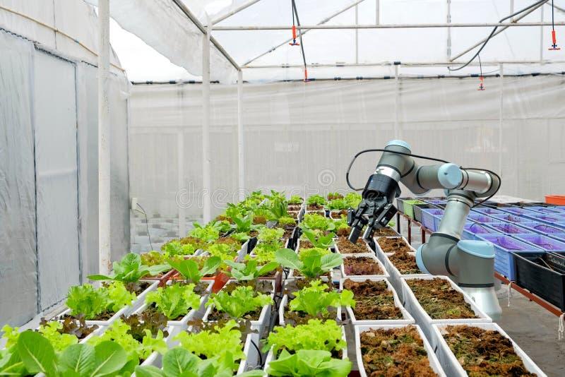 Modernt organiskt lantbrukarhem på smarta bruka 4 arkivfoto