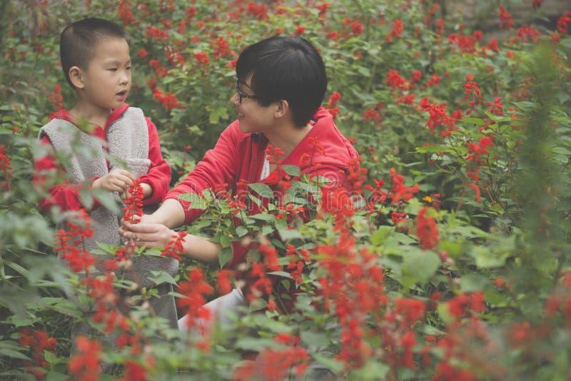 Moderson tillsammans i trädgård royaltyfri bild