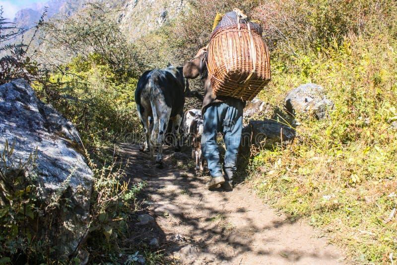 Modes de vie dans la région de montagne du Népal images stock