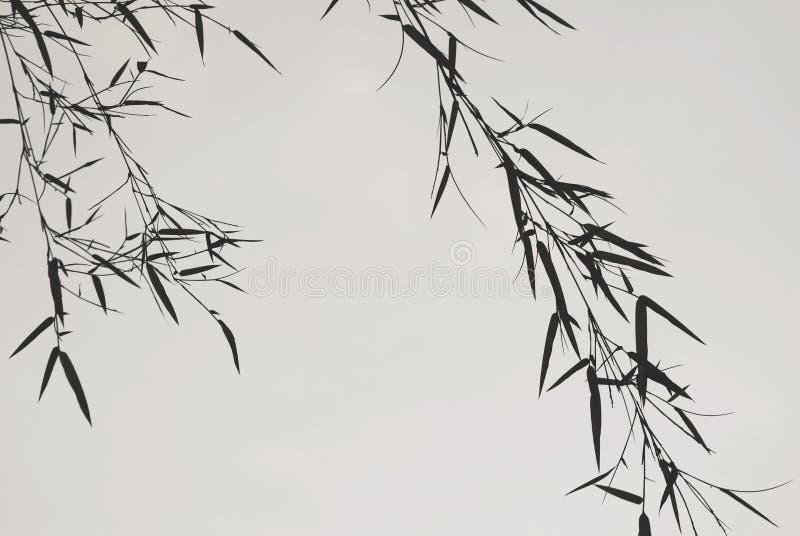 Modestia delle foglie di bambù, uno spiritual asiatico determinato immagini stock