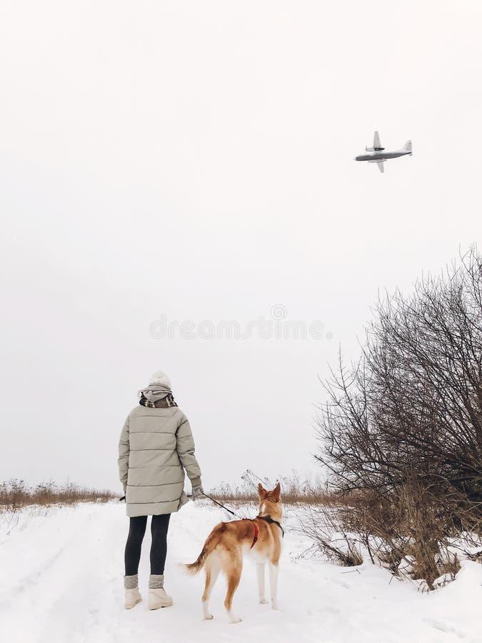 Modieus hipstermeisje die met leuke gouden hond in sneeuw koud park lopen en in hemel vliegtuig bekijken Vrouw die gang met haar  royalty-vrije stock afbeelding