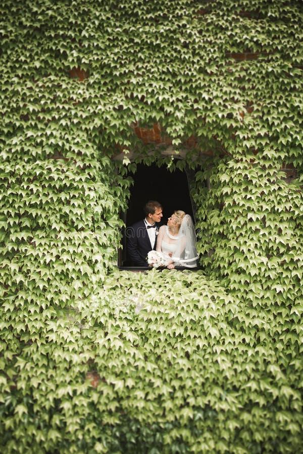 Modieus paar van gelukkige jonggehuwden die in het park op hun huwelijksdag lopen met boeket royalty-vrije stock foto