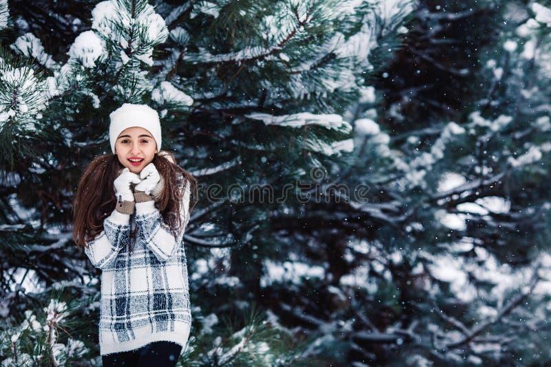 Modieus vrolijk meisje in een sweater in het de winterbos royalty-vrije stock fotografie