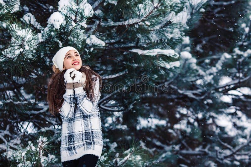 Modieus vrolijk meisje in een sweater in het de winterbos royalty-vrije stock afbeelding