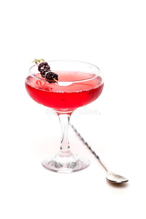 Modieuze cocktail royalty-vrije stock foto