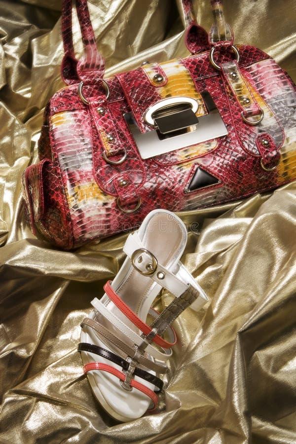 Modieuze Handtas en Schoen stock foto