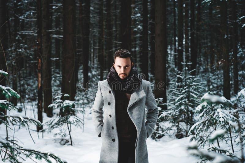 Modieuze Knappe Mens in de winterlaag stock afbeeldingen