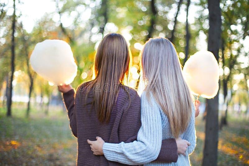 Modieuze mooie jonge meisjes die samen op de achtergrond van het de herfstpark lopen Het hebben van pret en het stellen stock afbeelding