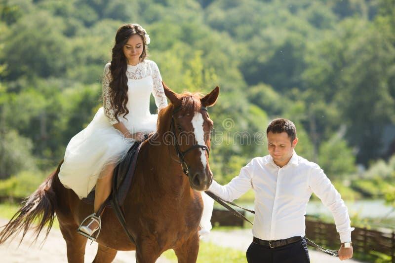 Modieuze schitterende gelukkige donkerbruine bruid die een paard berijden en elegant royalty-vrije stock foto