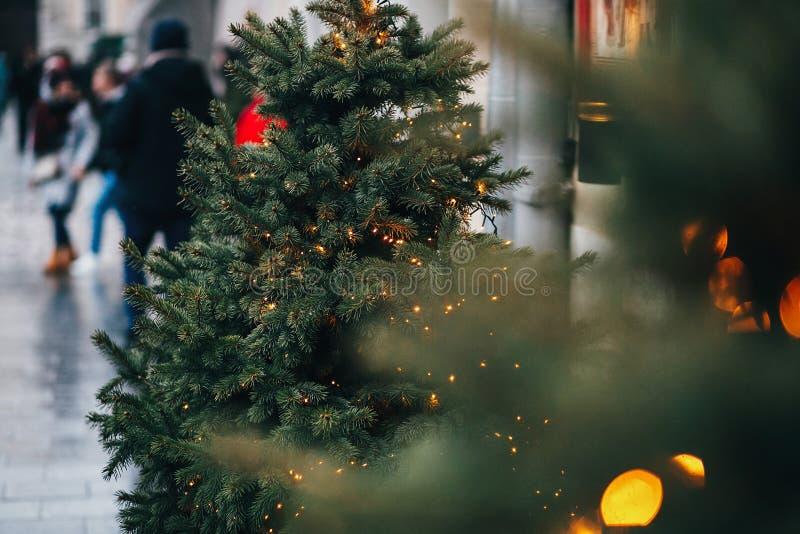 Modieuze slingerlichten op de spartakken van Kerstmisbomen met chri stock fotografie
