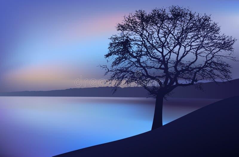 Modific il terrenoare la notte, un albero vicino al fiume illustrazione di stock