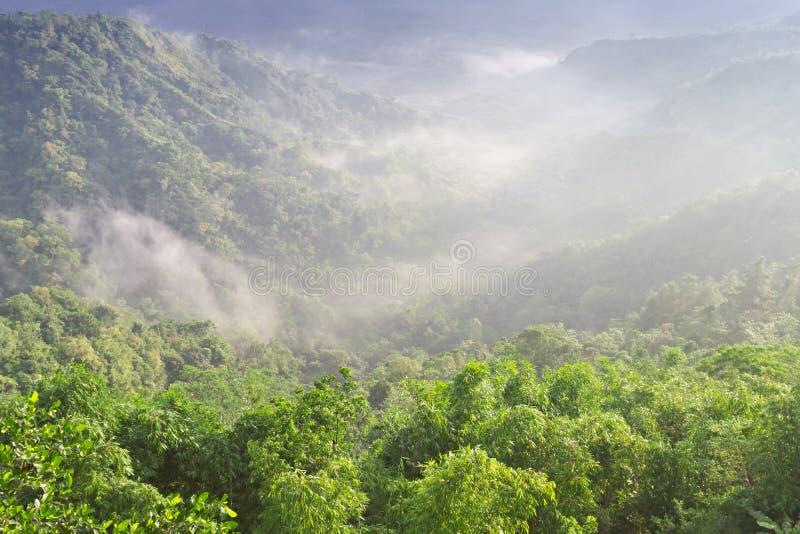 Modific il terrenoare nel vulcano di Batur immagini stock libere da diritti