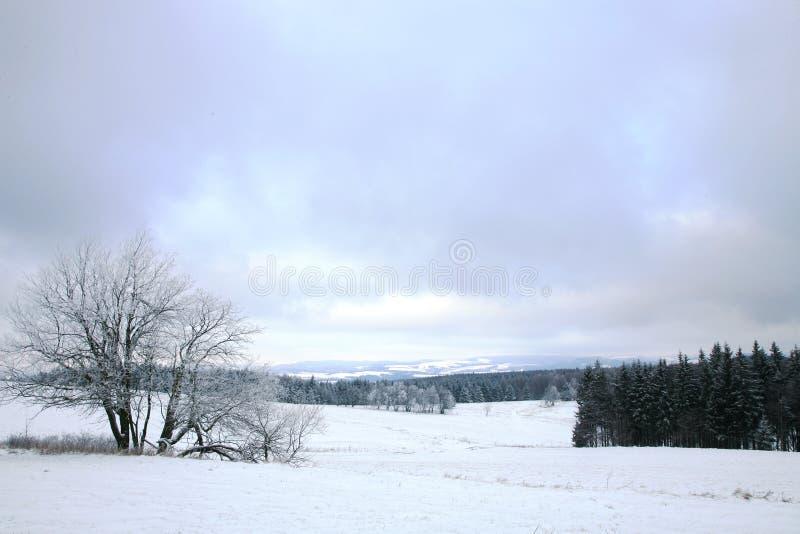 Modific il terrenoare vicino al villaggio di Pasterka in Polonia fotografia stock libera da diritti