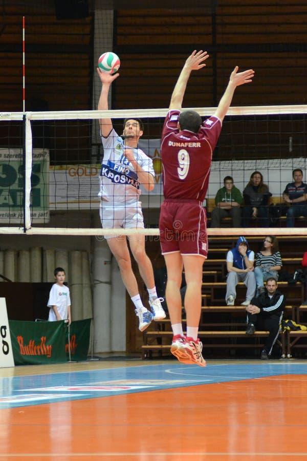 modig kaposvar volleyboll för dunaferr royaltyfri foto
