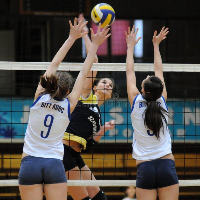 modig kaposvar volleyboll för eger royaltyfri foto