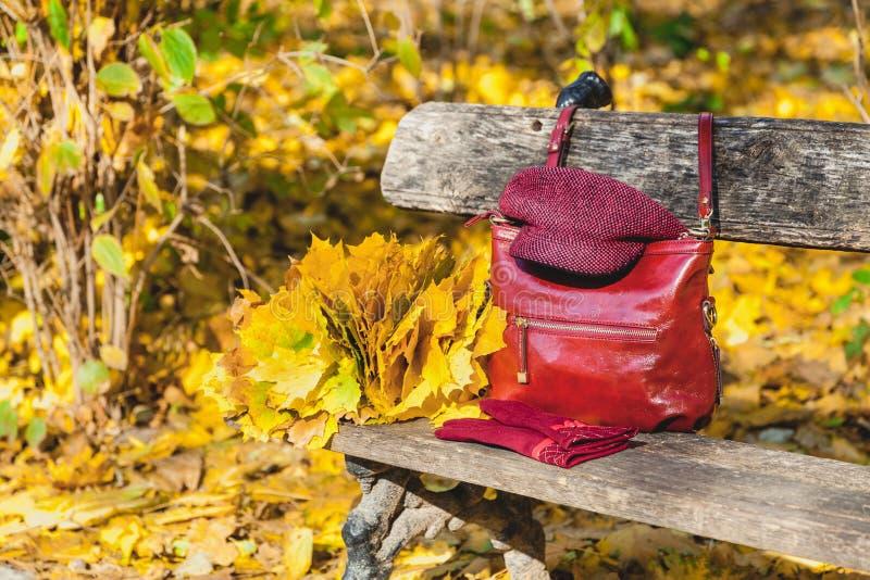 Modna jesieni kolekcja damy torby rękawiczki i nakrętka zdjęcia stock